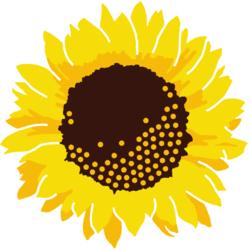Kosmetikpraxis Sonnenblume  Online Terminbuchung