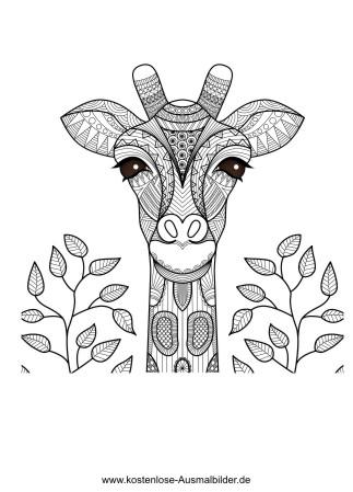 Giraffe Erwachsene Ausmalen Malvorlagen Tiere
