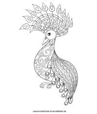 Pfau - Erwachsene ausmalen   Malvorlagen Tiere