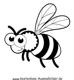 Ausmalbilder Biene 5 - Tiere zum ausmalen Malvorlagen Bienen