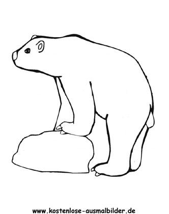 Ausmalbild Eisbär 3 zum Ausdrucken