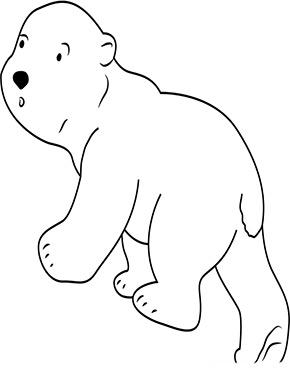 Ausmalbild Eisbär Baby zum Ausdrucken