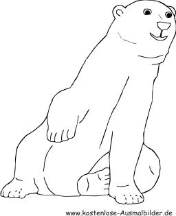 Ausmalbilder Eisbär - Tiere zum ausmalen Malvorlagen