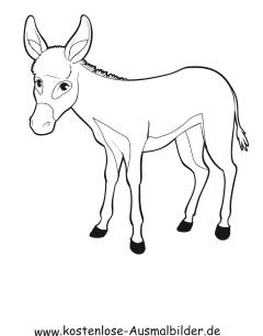 Ausmalbild Esel 1 zum Ausdrucken