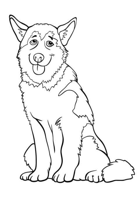 Ausmalbilder Huski - Tiere zum ausmalen Malvorlagen Hund