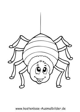 Ausmalbilder Spinne - Tiere zum ausmalen Malvorlagen