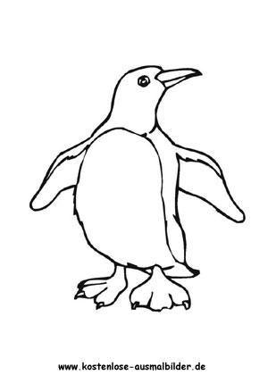 Ausmalbilder Pinguin Malvorlage zum ausmalen - Tiere zum