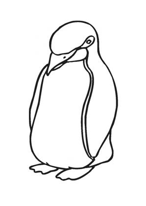 Ausmalbilder Junger dicker Pinguin - Tiere zum ausmalen