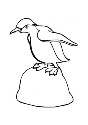 Ausmalbilder Kleiner Pinguin auf Felsen - Tiere zum