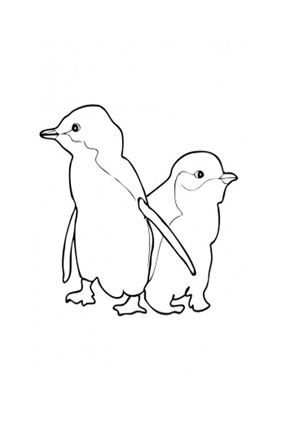 Ausmalbilder Zwei Kleine Blau Pinguine - Tiere zum