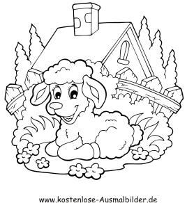 Ausmalbilder Lamm - Tiere zum ausmalen Malvorlagen Schafe