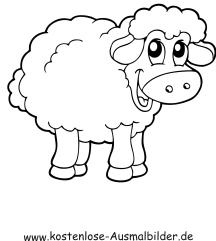 Ausmalbilder Schaf 5 - Tiere zum ausmalen Malvorlagen Schafe