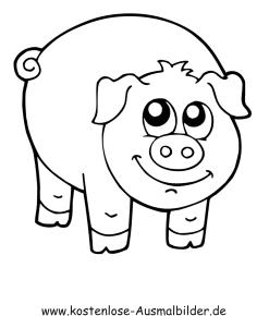 Ausmalbilder Schwein 3 - Tiere zum ausmalen Malvorlagen