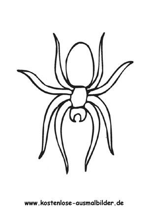 Ausmalbilder Spinne 3 - Tiere zum ausmalen Malvorlagen