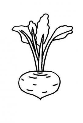 Ausmalbilder Obst und Gemüse Ausmalbilder Obst und