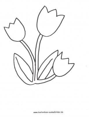 Malvorlagen - Ausmalbilder Tulpen Kostenlose