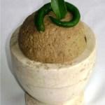 Bitter gourd Chutney-Pavakka-Kayapakka Chammanthi|kothiyavunu.com