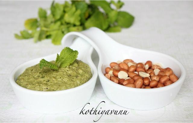 Peanut Mint Coriander Chutney|kothiyavunu.com