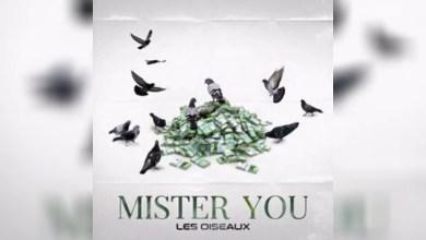 Photo of Mister You Ft Marwa Loud – Million d'€ lyrics