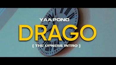 Photo of Yaa Pono – Drago (Freestyle)