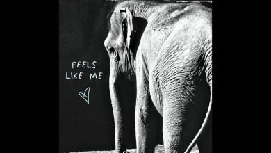 Photo of Gin Wigmore – Feels Like Me lyrics