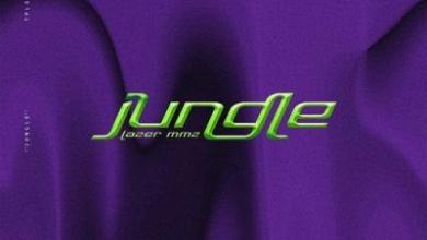 Photo of LAZER MMZ – Jungle Lyrics