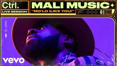 Photo of Mali Music – Mo'Lo (Like You) lyrics