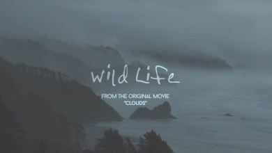 Photo of OneRepublic – Wild Life Lyrics