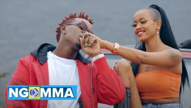 Photo of WILLY PAUL Ft AVRIL – COCO Lyrics