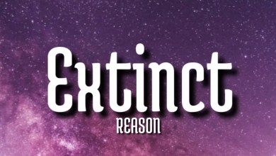 Photo of REASON Ft JID x Isaiah Rashad – Extinct Lyrics