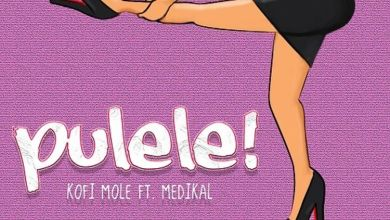Photo of Kofi Mole – Pulele! Ft Medikal