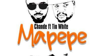 Photo of CHANDE Ft. TINI – Mapepe