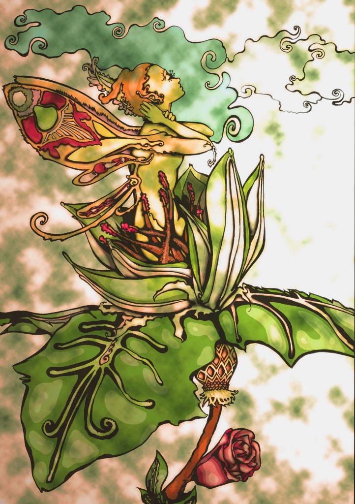 Moth Marvine Malic