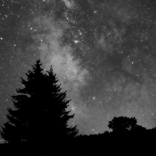 black and white stars photo