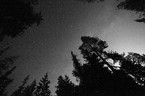 black and white starfield photo