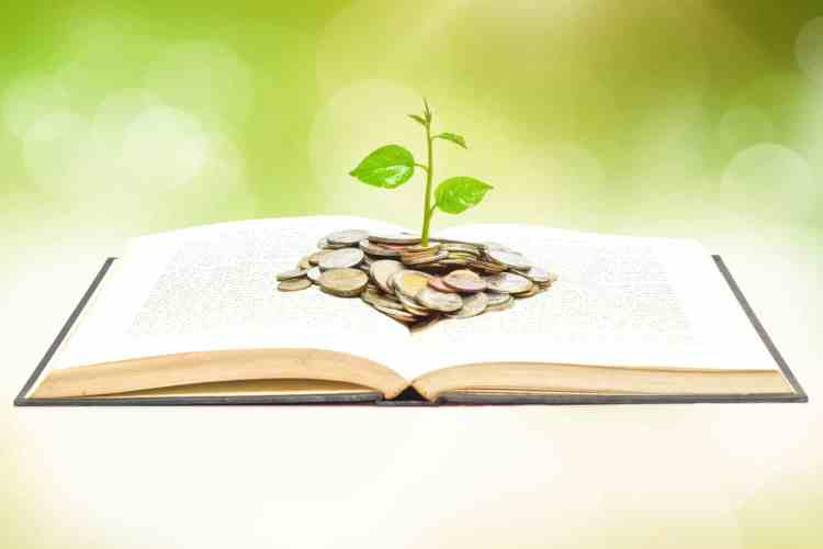 Financial-Literacy-Resources