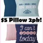 Two Pack Of Decorative Pillows, Just $5! Great To Change Up Your Home Decor On The Cheap!!!