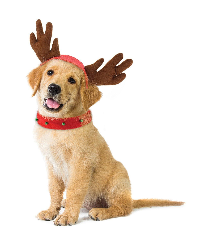 Holiday Dog Reindeer Costume