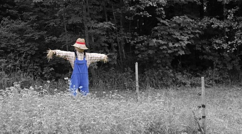 Kankan Scarecrow