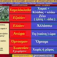 Ποντιακές λέξεις από Ποντιακούς στίχους τραγουδιών με αρχαιοελληνική προέλευση – Της Δέσποινας Μιχαηλίδου Καπλάνογλου
