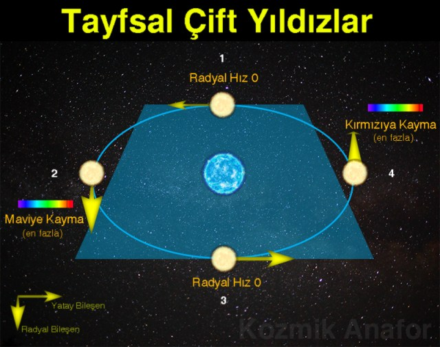 Tayfsal3
