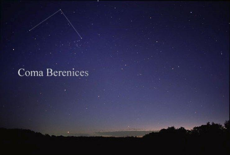 Berenis
