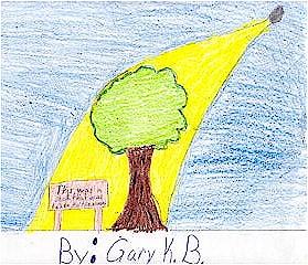 Ay Ağaçlarının özel olduğunu düşünüyorum. NASA ve Ormancılık servisi tarafından çalışılmalı. - Gary, 3. sınıf