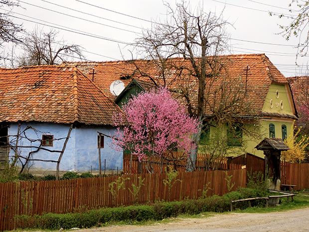 Fotós túra a falusi utcaképért (25)