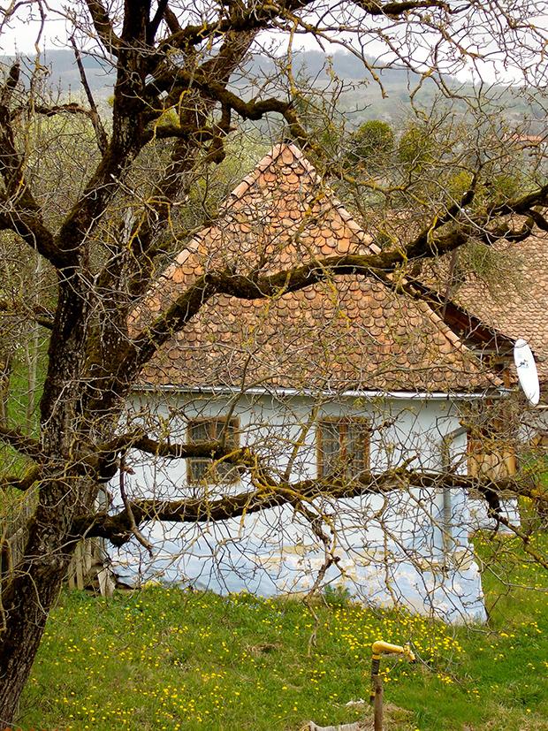 Fotós túra a falusi utcaképért (27)