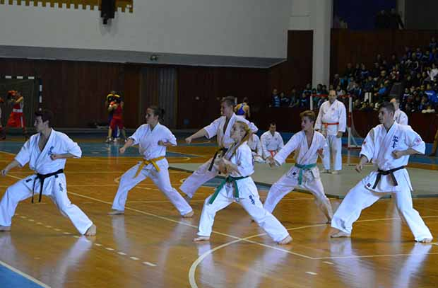 Maros Megyei Sportgála 2015 (2)