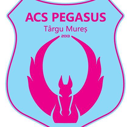 Pegasus SK-7, 2014.