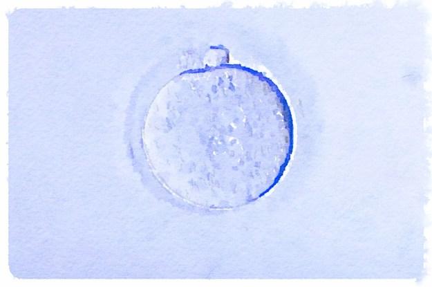 ovocyte