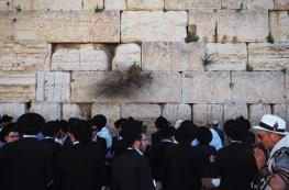 Au pied du Mur des Lamentations.