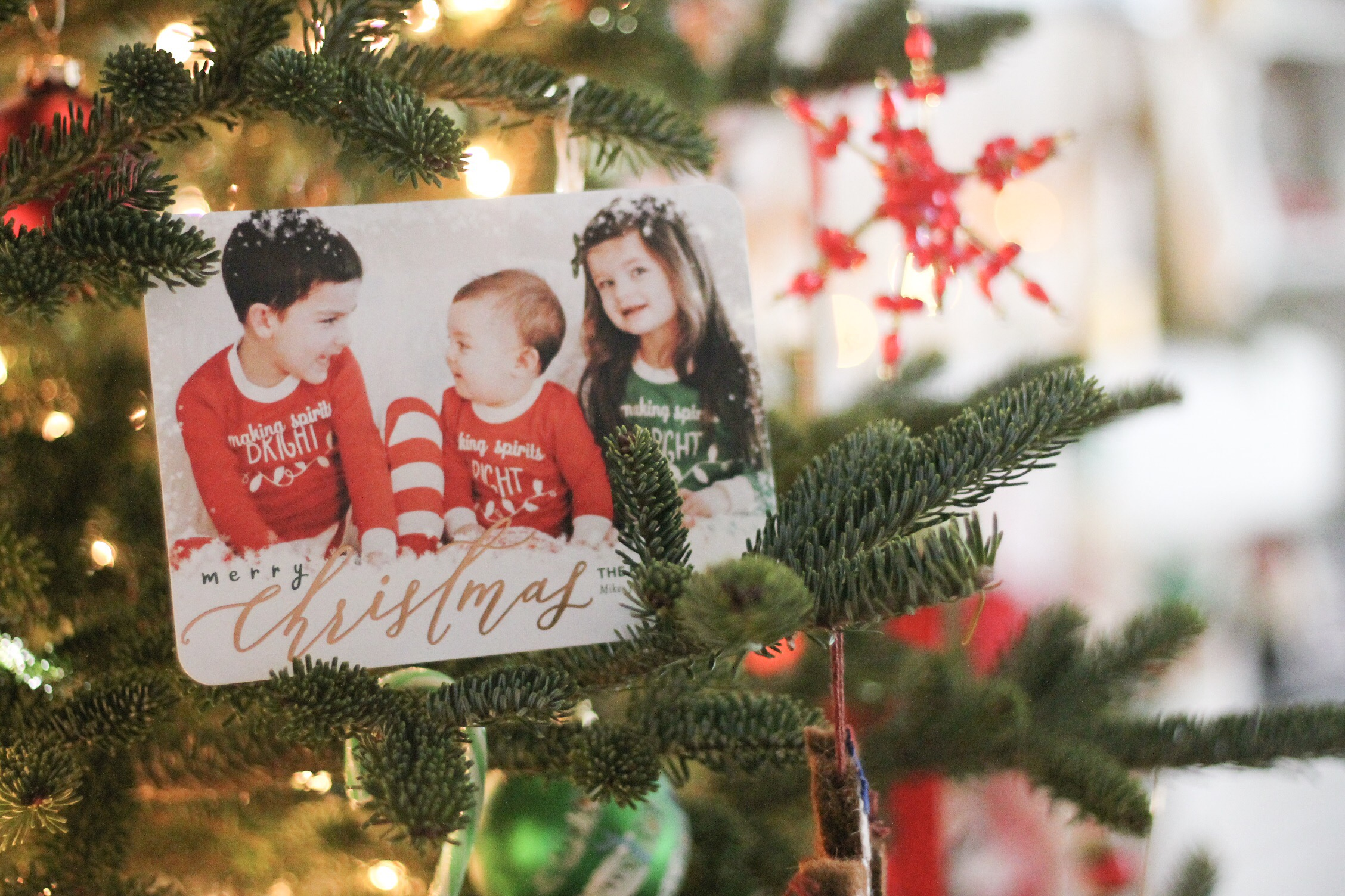 Our 2016 Holiday Cards with Tiny Prints - Kozy and Co